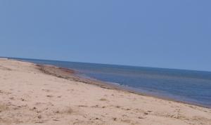 PEI Sandbar