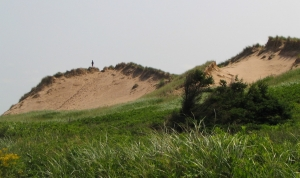 View from Top of Sand Dune